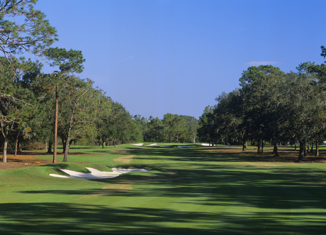 rees jones how to build a golf course