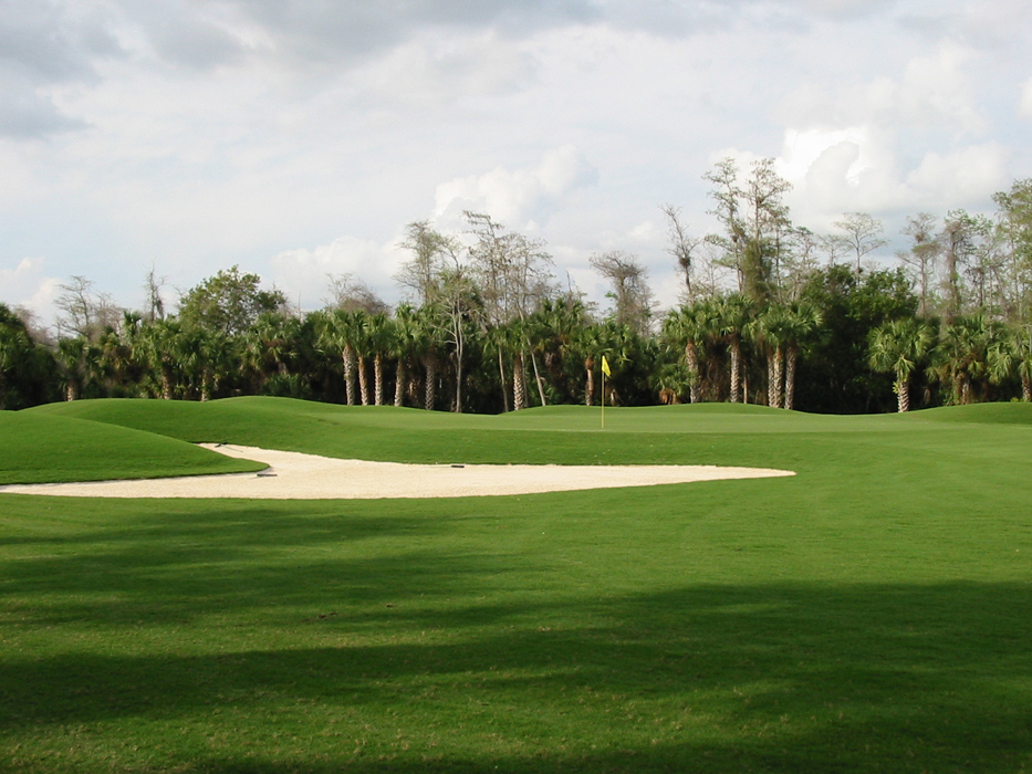 Olde Florida Golf Club Rees Jones Inc Golf Course Design